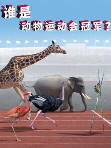 谁是动物运动会冠军