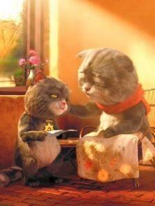 斑布猫日常系列短片