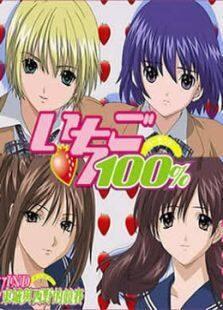 草莓100/% OVA