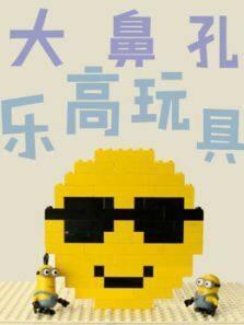 大鼻孔乐高玩具动画